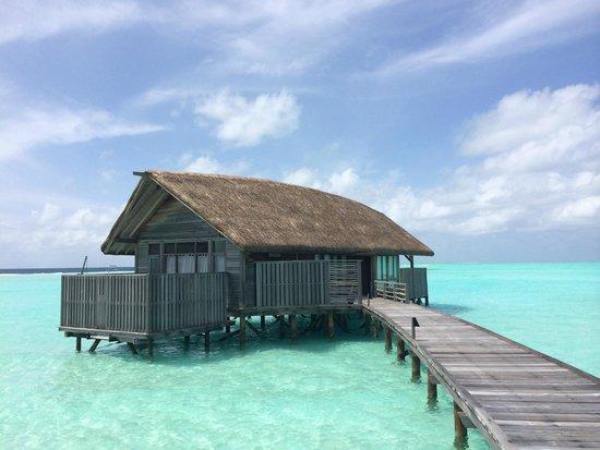Cocoa Island by COMO : Water villa 1004