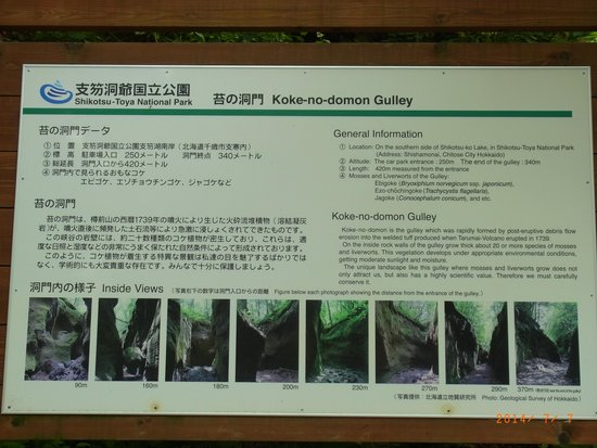 Kokenodomon: Huge explanatory board