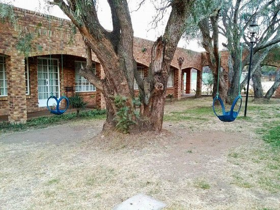 Sarabi Lodge and Guesthouse : Swings between rooms