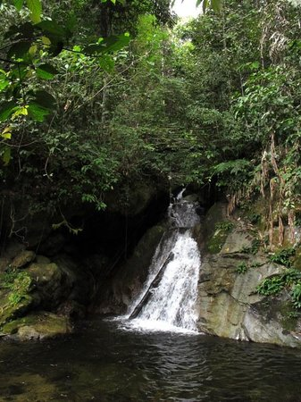 Lupa Masa Rainforest Camp: The nearby waterfall