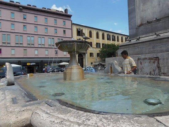 Mecenate Palace: Fountain