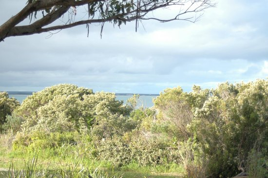 Marion Bay Caravan Park: slight view on the step  from standard cabin 10