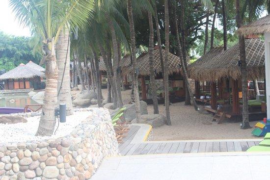 Hard Rock Hotel Pattaya : pool side