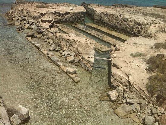Plage de Ses Illetes : natura incontaminata