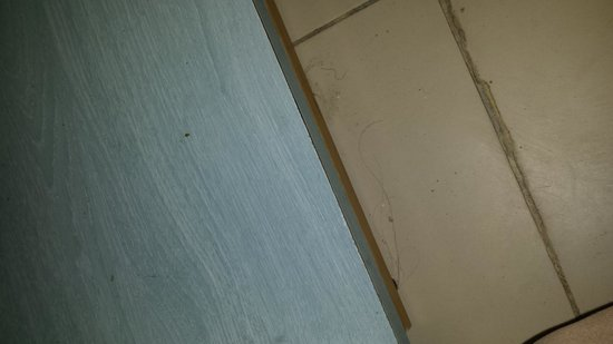 Karawan Beach & Resort : dirty floor in room