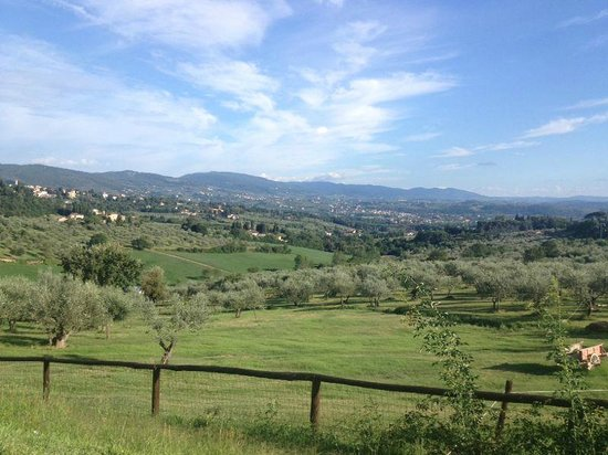 Fattoria Di Maiano: view from pool :) Nice!