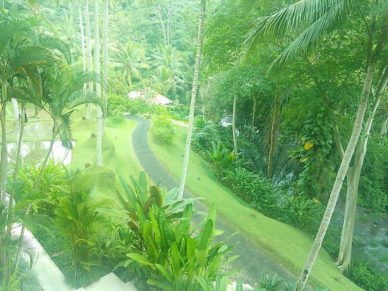 Four Seasons Resort Bali at Sayan: Pics from inside of the resort