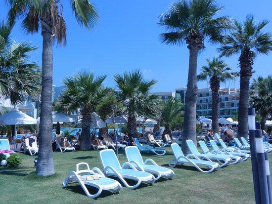 Paloma Pasha Resort : Vue du restaurant le midi