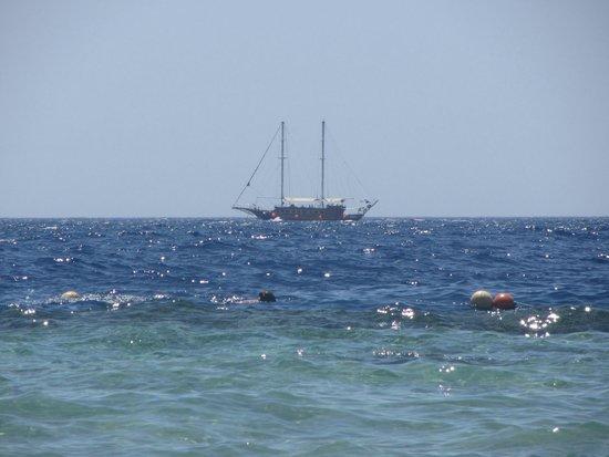 Sunrise Diamond Beach Resort : Море ,0Солнце ,Жара))