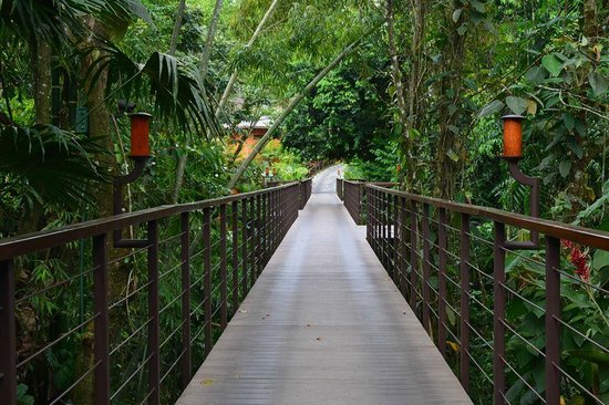 Nayara Resort Spa & Gardens: Bridge from Nayara Springs to Spa