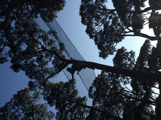 Park Albatros: Jungle run!!