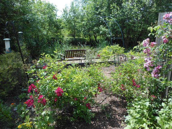 Jayes Holiday Cottages: Garden
