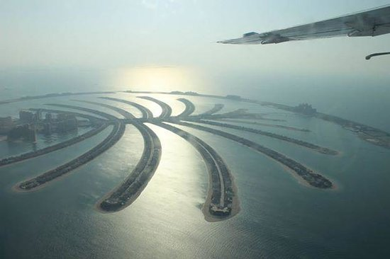 Seawings Seaplane Tours: Vista da Palmera