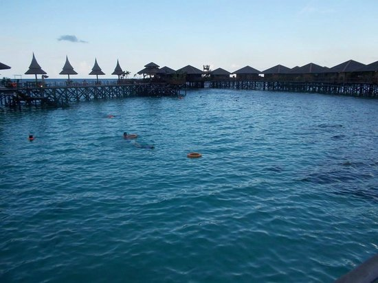 Sipadan Water Village: The best house pool & house reef !!