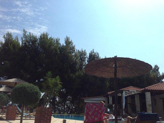 Country Inn Hotel: pool