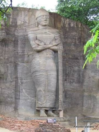 Gal Vihara: Buda en pie