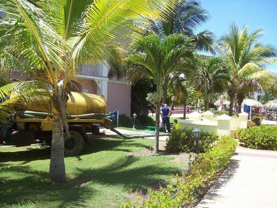 Blau Marina Varadero Resort: Camión de pocero