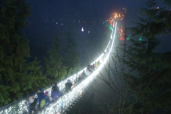 Capilano Suspension Bridge und Park: つり橋