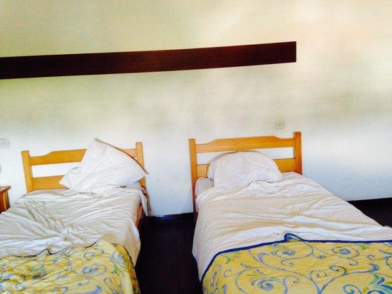 Le Lion de Mer : Les lits sales...