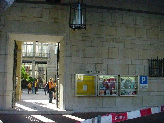 Fine Arts Museum (Kunstmuseum): Entrada