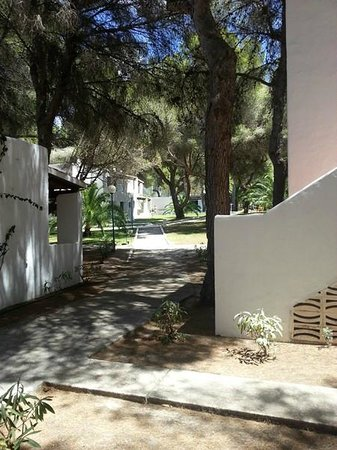 Insotel Club Maryland: La pineta ed i bungalow