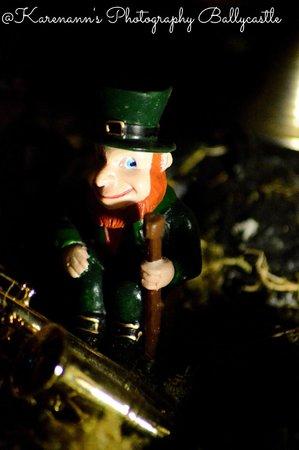 Leprechaun and Fairy Underground Cavern: 2