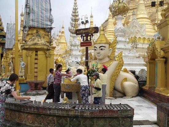 Pagode Shwedagon : offering prayers