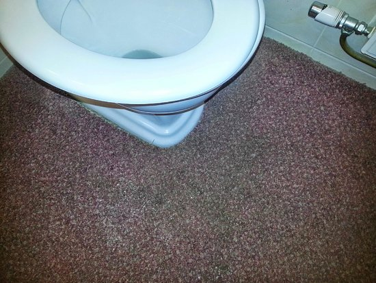 The Ocean View Hotel: Urine smelly carpet.