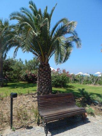 Atlantique Holiday Club: chemin vers la plage