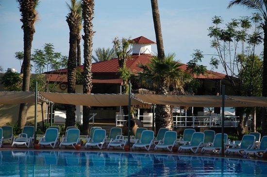 Paloma Grida Resort & Spa: Снейк-бар