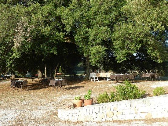 Masseria Iazzo Scagno : la salle de petit dejeuner !