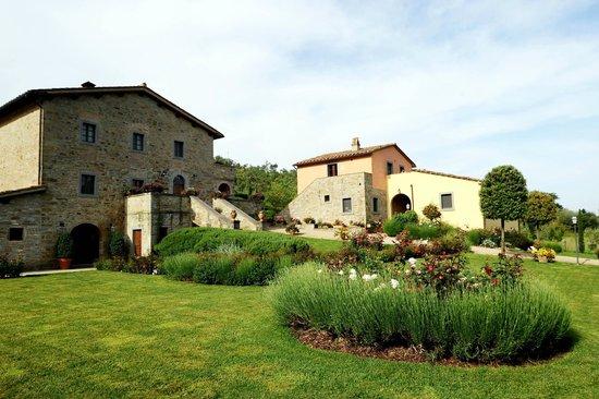 Casa Portagioia - Tuscany Bed and Breakfast: Small garden area