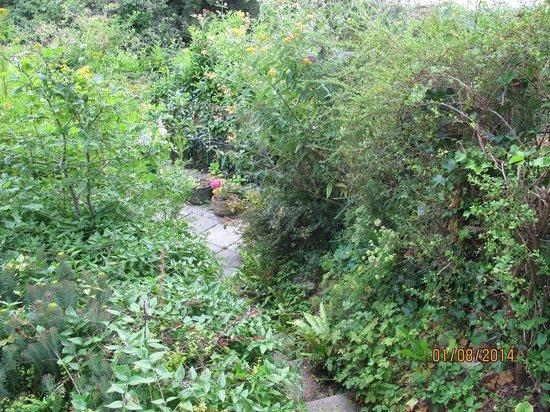 Gold Hill Museum: Garden