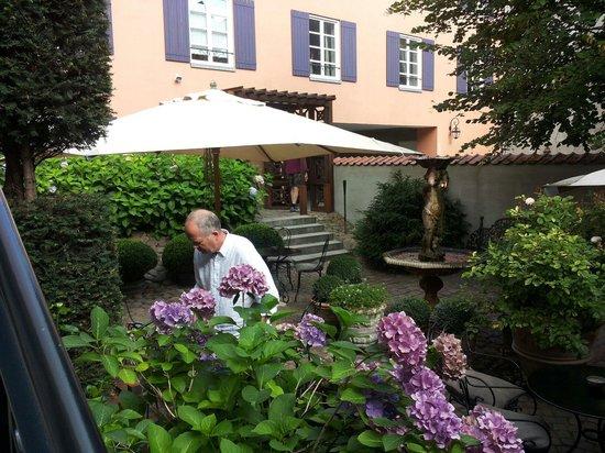 Villa Provence : The back yard
