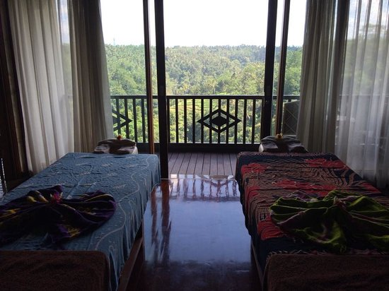 Rijasa Agung  - Bali Ubud Luxury Hotel Resort Villa: The view from the spa/massage room