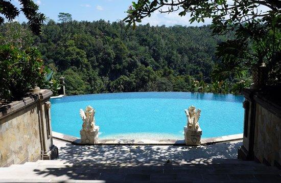 Rijasa Agung  - Bali Ubud Luxury Hotel Resort Villa : One of the best pools I have ever seen