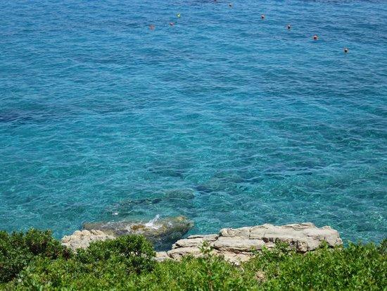Candia Park Village : Une mer magnifique avec pleins de poissons