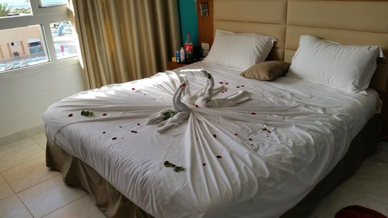 Skanes Family Resort: room after maid had cleaned (with swan sculpture)