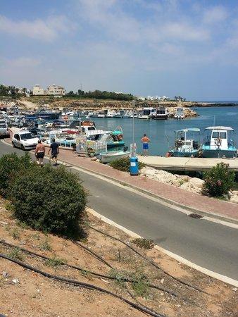 Pernera Beach Hotel: Little harbour