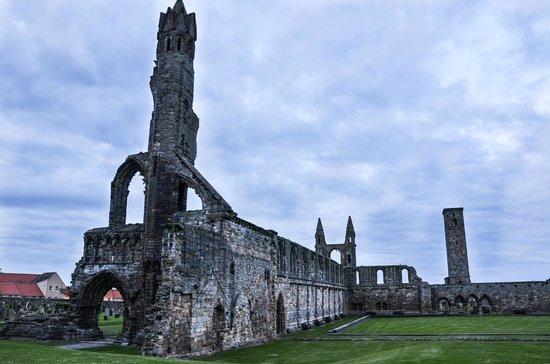 St Andrews Cathedral: dettaglio della cattedrale