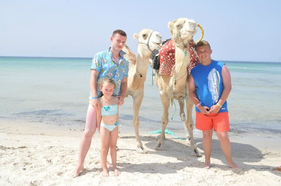 Skanes Family Resort: camels on beach
