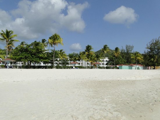 Jolly Beach Resort & Spa : view of the hotel from the edge of sea