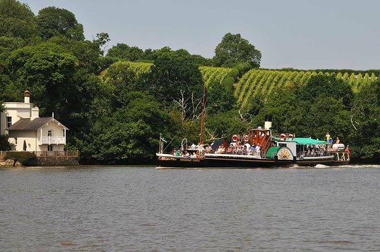 Paddle Steamer Kingswear Castle: KC at the Sharpham Estate on the River Dart