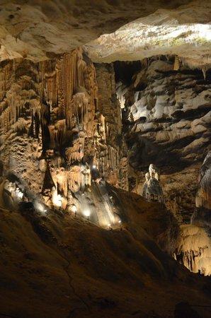 Grotte de Saint Marcel d'Ardèche : cathédrale