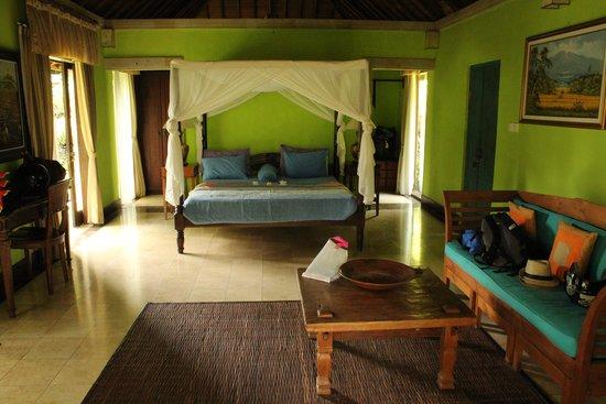 Villa Orchid Bali: Main room