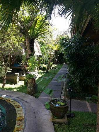 Lumbung Sari Cottages: Garden