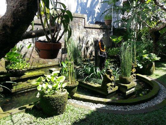 Lumbung Sari Cottages : Garden