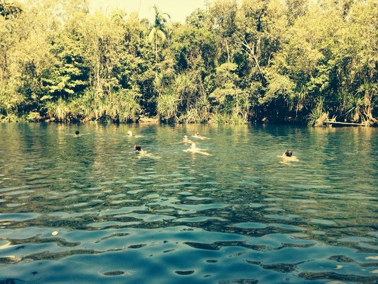 Berry Springs Nature Park : Beautiful