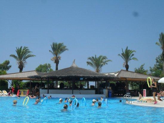 Felicia Village: Vue bar et piscine principale