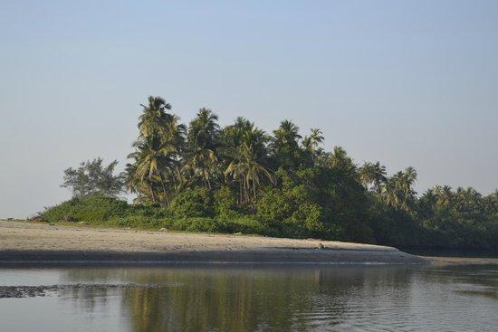 Ashwem Beach: Shores of Ashwem